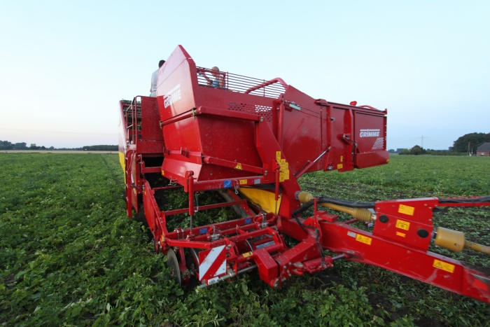 Conveyor Grimme 300.43111 large tops SE 150-60, new