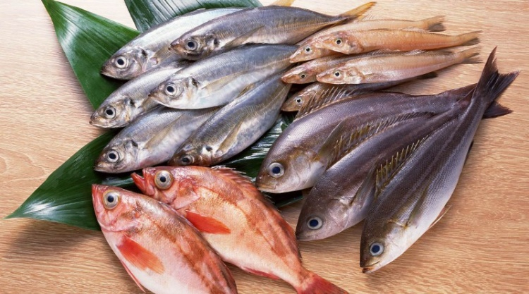 Каких рыб выгодно. - Vismar Aqua