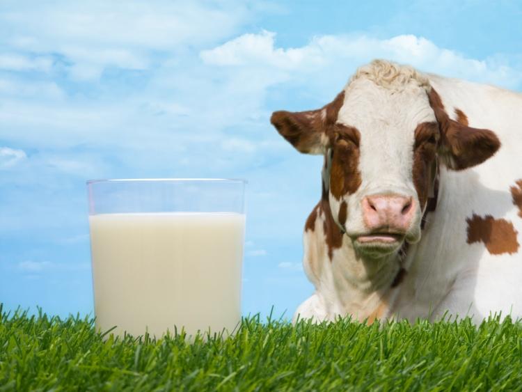 Покупка молока