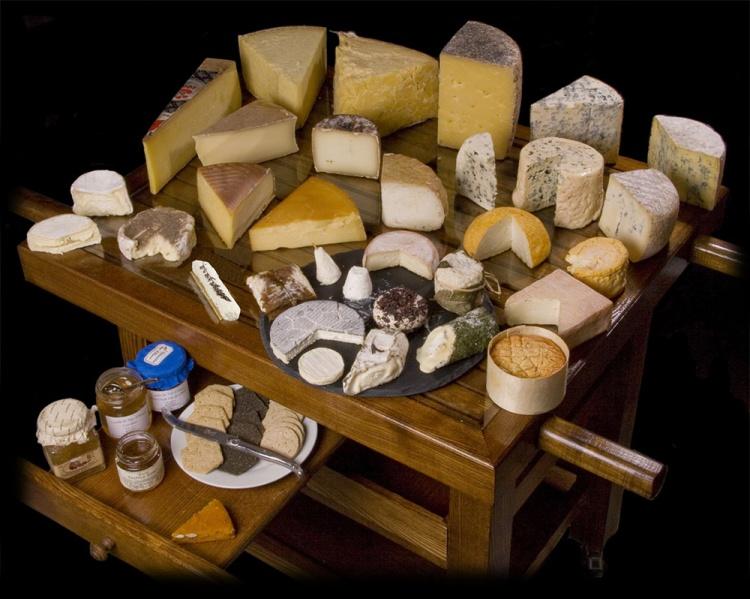 Разнообразие сортов сыра