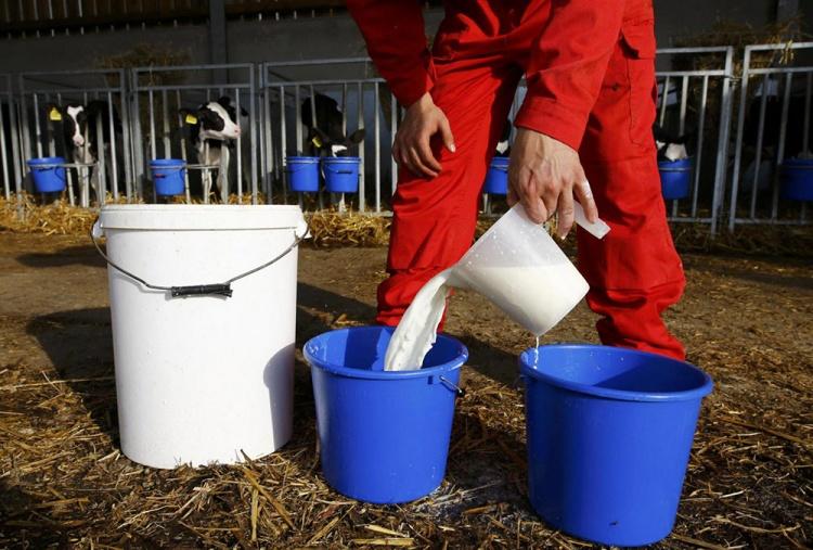 ГОСТ производство сухого молока