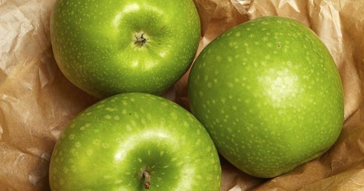 Лучшие зимние зелёные яблоки